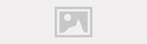 Griffcar Multimarcas
